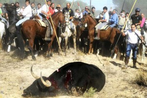Platform Torture is Not Culture takes legal action 