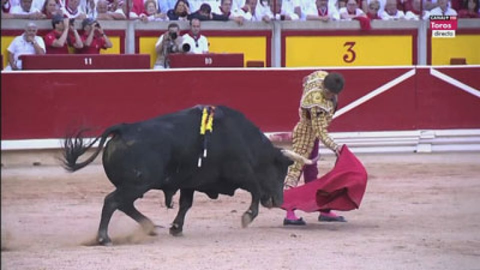 End Bullfighting