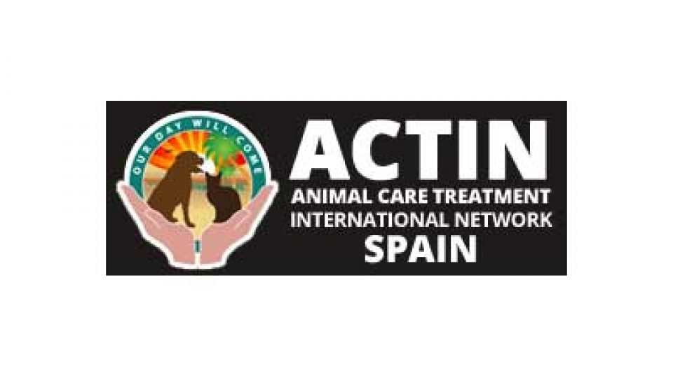 Animal Care Treatment International