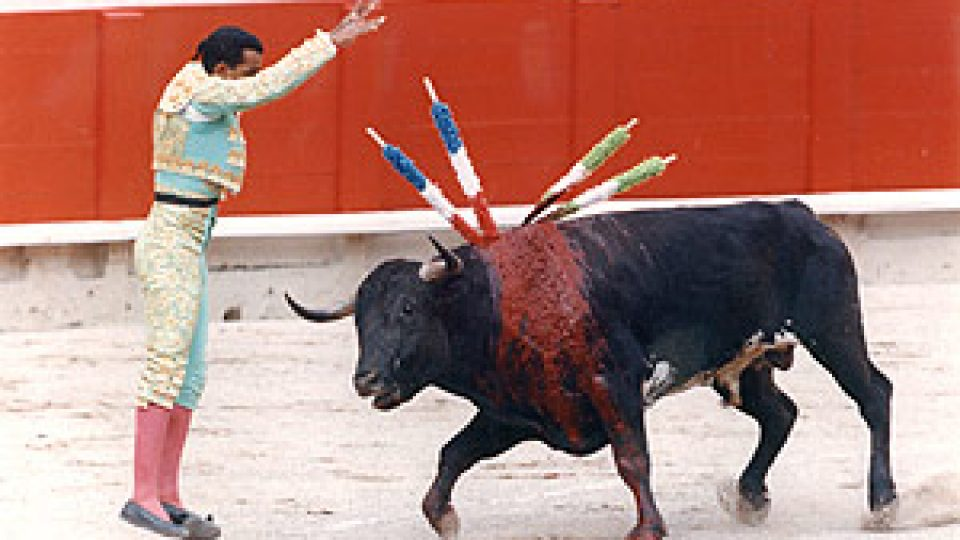 Stop Bullfighting